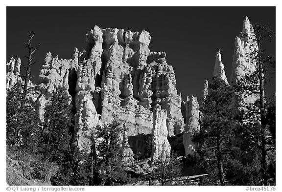 Hoodoos capped with magnesium-rich limestone. Bryce Canyon National Park (black and white)