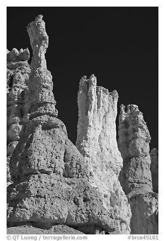 Hoodoos subject to chemical weathering by carbonic acid. Bryce Canyon National Park (black and white)