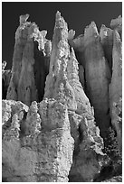 Weathered Claron formation limestone. Bryce Canyon National Park ( black and white)