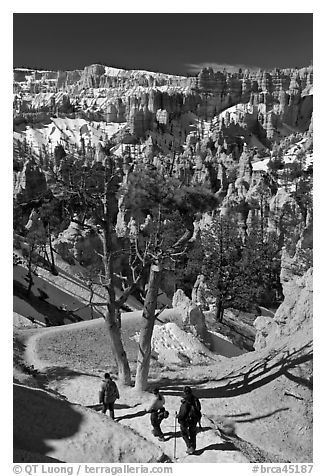 Hiking into amphitheater. Bryce Canyon National Park (black and white)