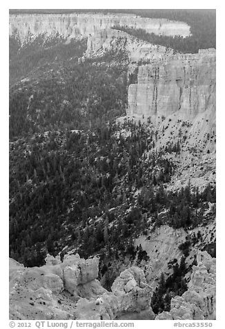 Pink cliffs. Bryce Canyon National Park (black and white)