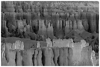 Rows of hoodoos. Bryce Canyon National Park ( black and white)