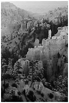 Trees, ridges, and hoodoos, Fairyland Point. Bryce Canyon National Park ( black and white)
