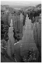 Hoodoos and cirque, Fairyland Point. Bryce Canyon National Park ( black and white)