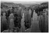 Hoodoos and Fairyland Canyon, early morning. Bryce Canyon National Park ( black and white)