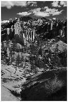 Hill with hoodoos, Fairyland Loop. Bryce Canyon National Park ( black and white)