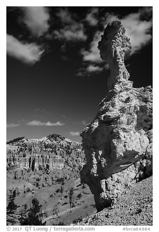 Mushroom-shaped freestanding hoodoo. Bryce Canyon National Park (black and white)