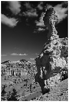 Mushroom-shaped freestanding hoodoo. Bryce Canyon National Park ( black and white)