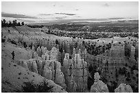 Visitor looking, near Fairyland Point. Bryce Canyon National Park ( black and white)