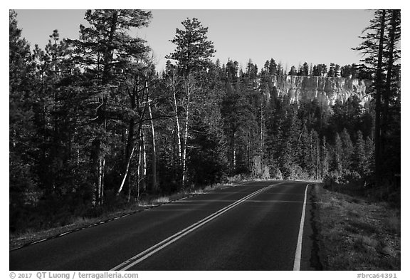 Park road. Bryce Canyon National Park (black and white)