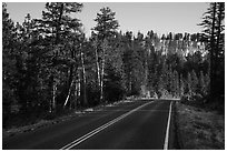 Park road. Bryce Canyon National Park ( black and white)