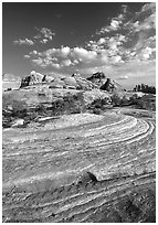 Sandstone swirls near Elephant Hill, the Needles, late afternoon. Canyonlands National Park, Utah, USA. (black and white)