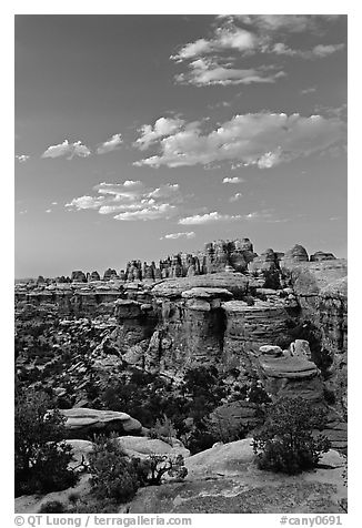 Last light on the Needles. Canyonlands National Park (black and white)
