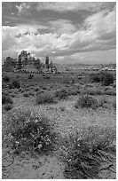 Sandstone towers in sandy flat basin, Chesler Park. Canyonlands National Park, Utah, USA. (black and white)