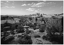Elephant Canyon at sunset, the Needles. Canyonlands National Park, Utah, USA. (black and white)