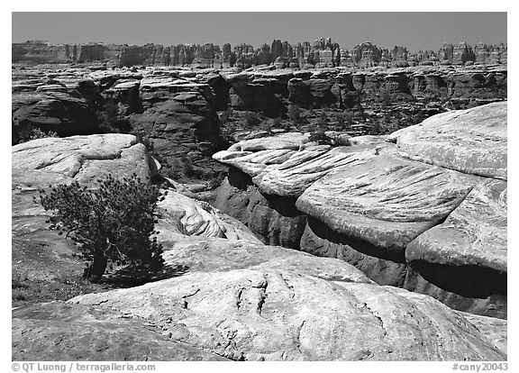 Crack and rock needles near Elephant Hill, mid-day, Needles District. Canyonlands National Park (black and white)
