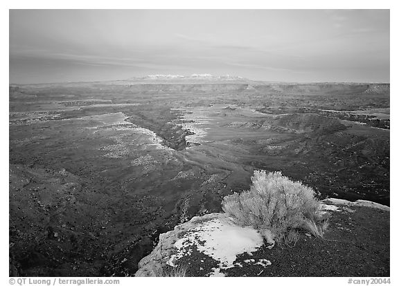 Gorge and plateau at sunset, Island in the Sky. Canyonlands National Park (black and white)