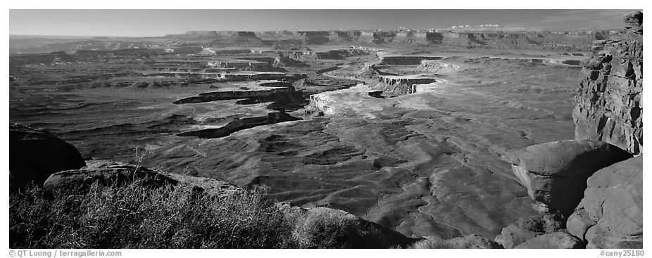 Canyon scenery, Island in the Sky. Canyonlands National Park (black and white)
