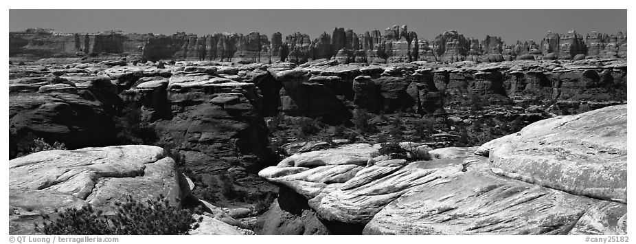 Sandstone needles near Elephant Hill, Needles District. Canyonlands National Park (black and white)