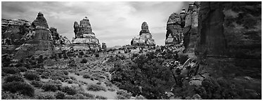 Rock towers, Chessler Park, Needles District. Canyonlands National Park (Panoramic black and white)