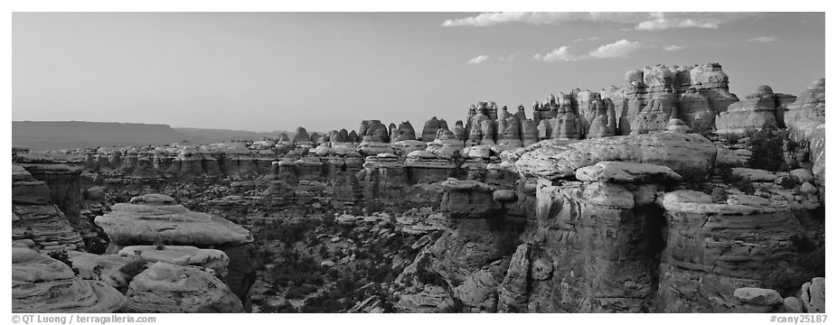 Colorful spires of Cedar Mesa Sandstone, sunset, Needles District. Canyonlands National Park (black and white)