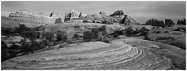 Sandstone Swirls and Rock needles at sunset, Needles District. Canyonlands National Park (Panoramic black and white)
