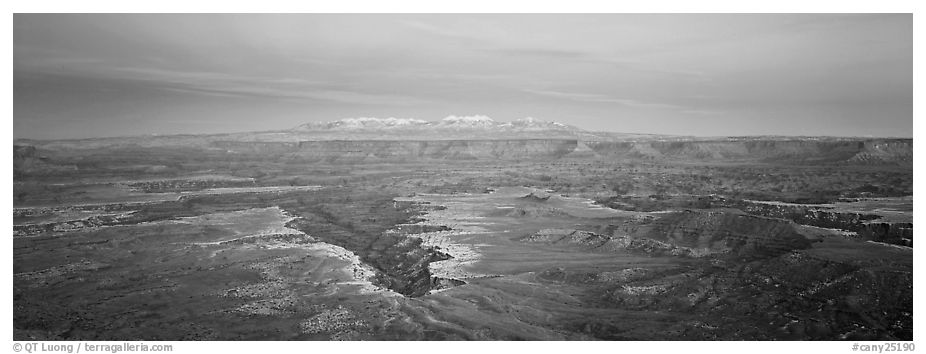Canyon gorge and mountains in pastel colors, Island in the Sky. Canyonlands National Park (black and white)
