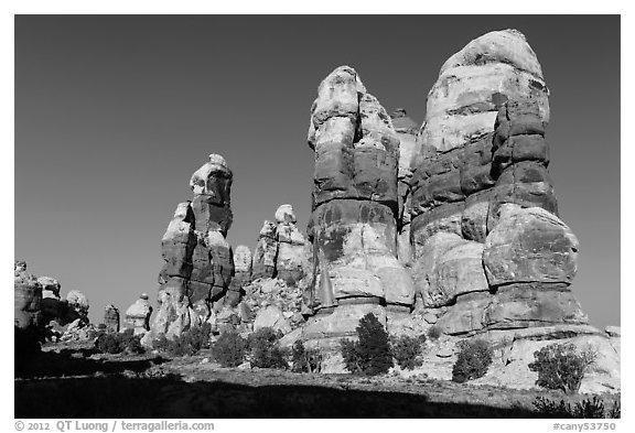 Dollhouse pinnacles, Maze District. Canyonlands National Park (black and white)