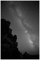 Doll House pinnacles and Milky Way. Canyonlands National Park, Utah, USA. (black and white)