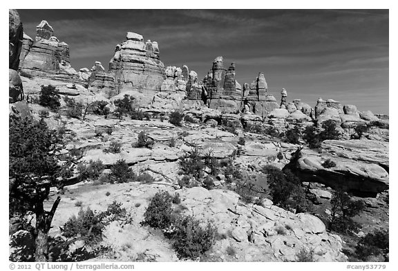 Spires and pinnacles, Dollhouse. Canyonlands National Park (black and white)