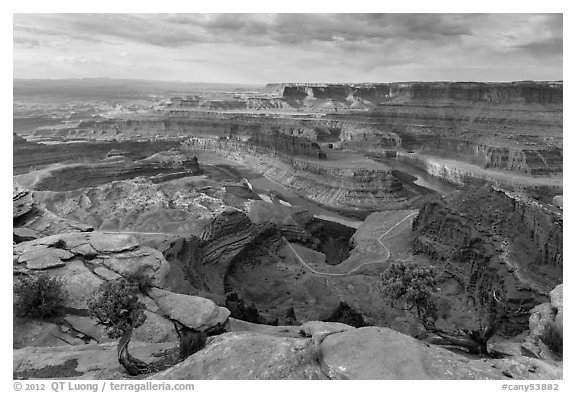 Gooseneck of the Colorado River from Dead Horse Point. Canyonlands National Park (black and white)