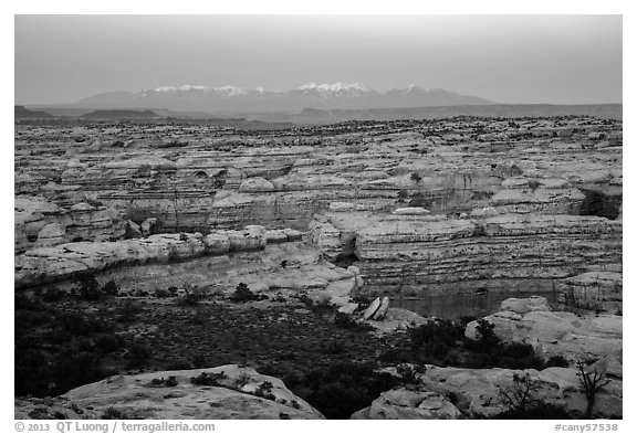 Maze canyons and snowy mountains at dusk. Canyonlands National Park (black and white)