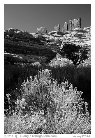 Chocolate drops seen from Maze canyons. Canyonlands National Park (black and white)