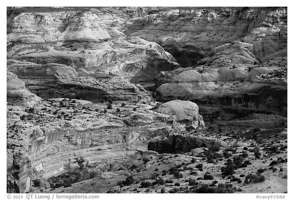 Horseshoe Canyon rims. Canyonlands National Park (black and white)