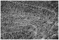 Steep switchbacks of the Flint Trail, Orange Cliffs Unit, Glen Canyon National Recreation Area, Utah. USA ( black and white)