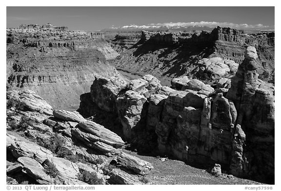 Surprise Valley, Colorado River, and snowy mountains. Canyonlands National Park (black and white)