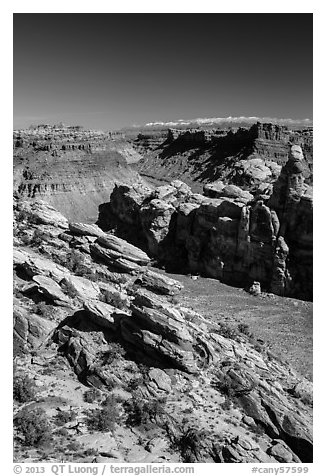 Surprise Valley, Colorado River seen from Dollhouse. Canyonlands National Park (black and white)
