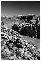 Surprise Valley, Colorado River seen from Dollhouse. Canyonlands National Park, Utah, USA. (black and white)