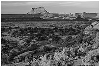 Maze and Elaterite Butte at sunset. Canyonlands National Park ( black and white)