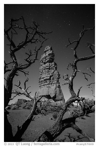 Standing Rock at night seen through branches. Canyonlands National Park (black and white)