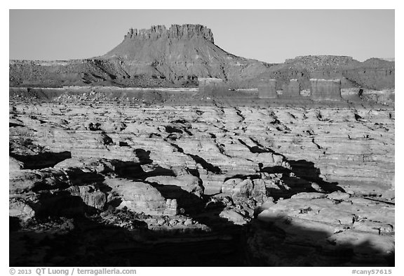 Chocolate drops, Maze canyons, and Elaterite Butte, early morning. Canyonlands National Park (black and white)
