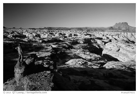 Park visitor looking, Maze canyons. Canyonlands National Park (black and white)
