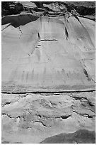 Looking up canyon wall with Harvest Scene pictographs. Canyonlands National Park, Utah, USA. (black and white)