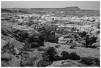 Shot Canyon at dusk, Maze District. Canyonlands National Park ( black and white)