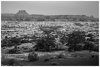 Maze and  Elaterite Butte seen at dawn from Standing Rock. Canyonlands National Park ( black and white)