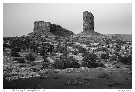 Lizard and Plug rock formations at dawn. Canyonlands National Park (black and white)