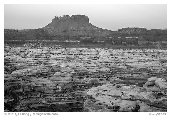 Chocolate drops, Maze canyons, and Elaterite Butte at dawn. Canyonlands National Park (black and white)