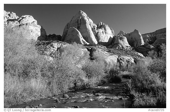 Freemont River and spring vegetation. Capitol Reef National Park (black and white)