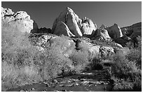 Freemont River and spring vegetation. Capitol Reef National Park ( black and white)