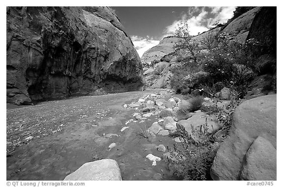 Wash in Capitol Gorge. Capitol Reef National Park (black and white)